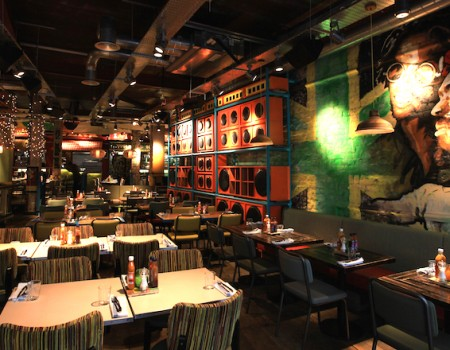 Turtle Bay Newcastle: the launch