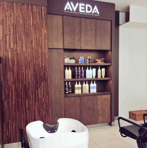 Aveda blow dry bar Fenwick