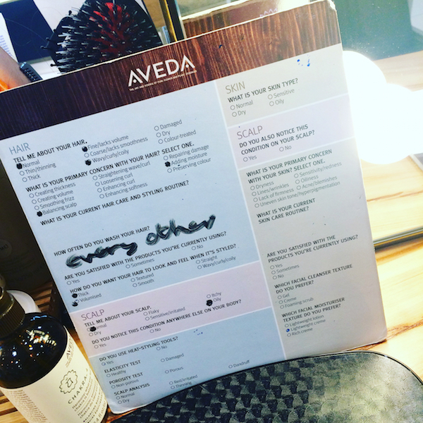 Aveda hair consultation