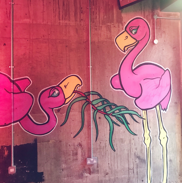 Market Shaker Newcastle flamingoes
