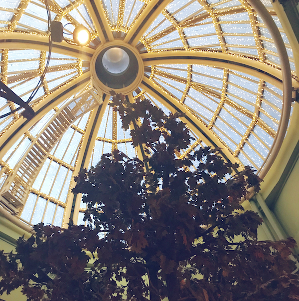 The Botanist Newcastle glass dome